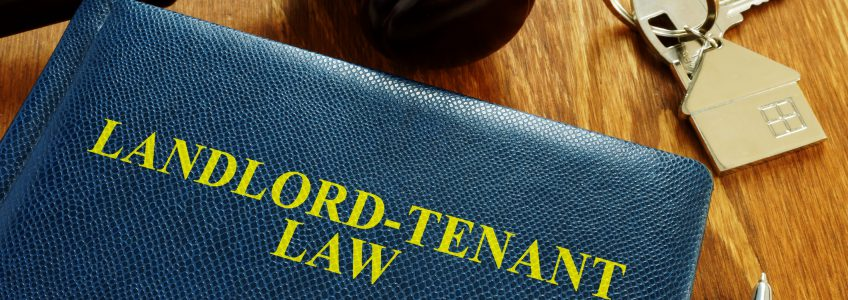 landlord law tradewind properties image